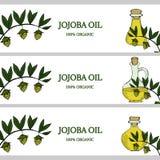 3 bandeiras horizontais, óleo do jojoba na cor Imagem de Stock Royalty Free