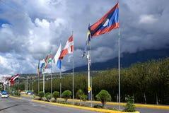 Bandeiras internacionais ao lado da estrada Imagens de Stock