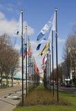 Bandeiras internacionais em Haia Imagens de Stock Royalty Free