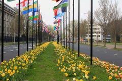 Bandeiras internacionais em Haia Fotografia de Stock Royalty Free
