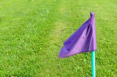 Bandeiras lilás na grama verde de um campo de ação do futebol Imagens de Stock