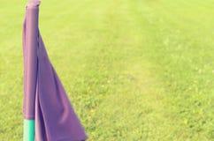 Bandeiras lilás na grama verde de um campo de ação do futebol Imagens de Stock Royalty Free