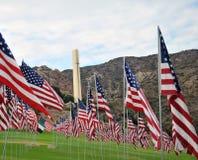 Bandeiras na memória daquelas que morreram em 9/11 dos attacts Fotografia de Stock Royalty Free