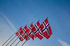 Bandeiras norueguesas durante o verão Imagem de Stock Royalty Free