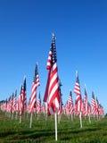 Bandeiras nos campos da cura para 9/11 Imagens de Stock
