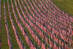 Bandeiras nos campos da cura para 9/11 Imagens de Stock Royalty Free