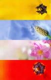 Bandeiras pintadas mão da flor Imagens de Stock Royalty Free