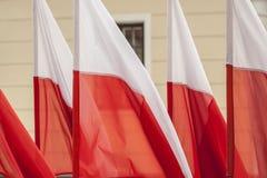Bandeiras polonesas Fotografia de Stock