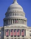 Bandeiras presidenciais da inauguração, comemoração inaugural do presidente Bill Clinton, o 20 de janeiro de 1993 Fotografia de Stock