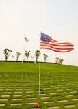Bandeiras que acenam no cemitério Imagem de Stock