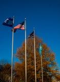 Bandeiras que fundem no vento Imagens de Stock Royalty Free