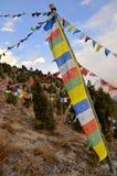 Bandeiras que penduram sobre árvores, Índia Foto de Stock Royalty Free