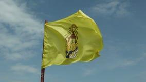 Bandeiras reais de Tailândia vídeos de arquivo