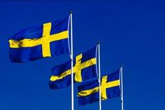 Bandeiras suecos no vento fotografia de stock