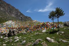 Bandeiras tibetanas do jogador no monte fotografia de stock royalty free