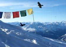 Bandeiras tibetanas em alpes suíços Fotografia de Stock Royalty Free