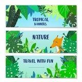 Bandeiras tropicais ajustadas com vegetais e animal Ilustração do vetor Foto de Stock