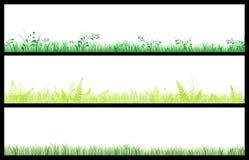 Bandeiras verdes ilustração stock