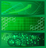 Bandeiras verdes Fotos de Stock