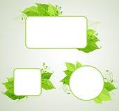 Bandeiras verdes da ecologia Fotos de Stock