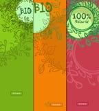 Bandeiras verticais coloridas de 100 bio, alimento natural com lugar para seu texto Desenhado à mão Ilustração Stock