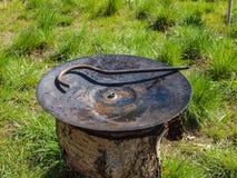 Bandeja caseiro que está no gramado Imagem de Stock