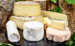 Bandeja con diversos quesos franceses Fotografía de archivo
