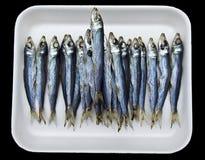 Bandeja de anchoas en el mercado Fotos de archivo