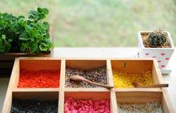 Bandeja de arena colorida para el pote de la planta con el cactus y el papermint po Fotografía de archivo