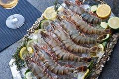 Bandeja de calamar fresco fotografia de stock