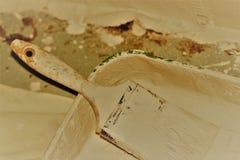 Bandeja de la brocha y de la pintura cubierta en la pintura blanca Imágenes de archivo libres de regalías