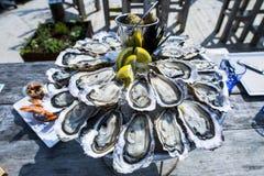 Bandeja de la ostra, Cap Ferret Foto de archivo libre de regalías