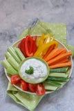 Bandeja de legumes frescos sortidos com mergulho Fotos de Stock Royalty Free