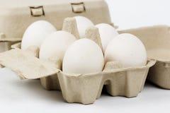 Bandeja de papel del huevo Fotos de archivo