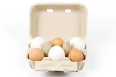 Bandeja de papel del huevo imagen de archivo
