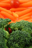 Bandeja de vegetais Imagem de Stock Royalty Free