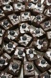 Bandeja del alimento del partido del brownie Imágenes de archivo libres de regalías
