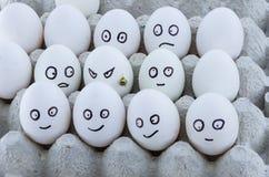 Bandeja del huevo de la cartulina con los huevos del pollo Concepto social de terrorismo Fotografía de archivo libre de regalías
