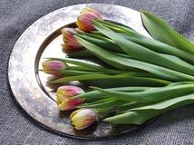 Bandeja del metal con los tulipanes en una arpillera Imagen de archivo