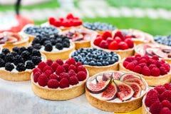 Bandeja del postre de las tartas de la fruta y de la baya clasificada al aire libre Imágenes de archivo libres de regalías