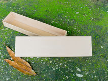 Bandeja do armazenamento e caixa da tampa no musgo verde Fotos de Stock Royalty Free