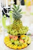 Bandeja do fruto Foto de Stock