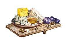 Bandeja do queijo para cada gosto Ilustração Royalty Free