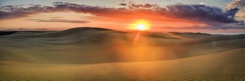 Bandeja do vermelho da elevação da duna de areia Foto de Stock Royalty Free