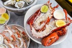 Bandeja fresca do marisco com lagosta, mexilhões e ostras Fotografia de Stock