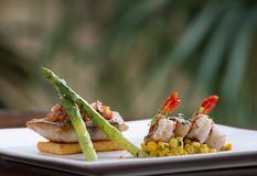 A bandeja Haute da culinária fritou a faixa de peixes do barramundi com camarões imagem de stock