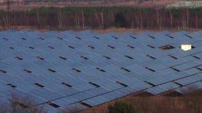 Bandeja industrial da vista geral do campo do painel solar filme