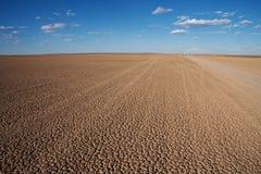 Bandeja seca do deserto Imagens de Stock