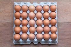 Bandejas do ovo da galinha Fotos de Stock Royalty Free