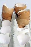 bandejas dos ovos brancos e marrons Fotos de Stock Royalty Free